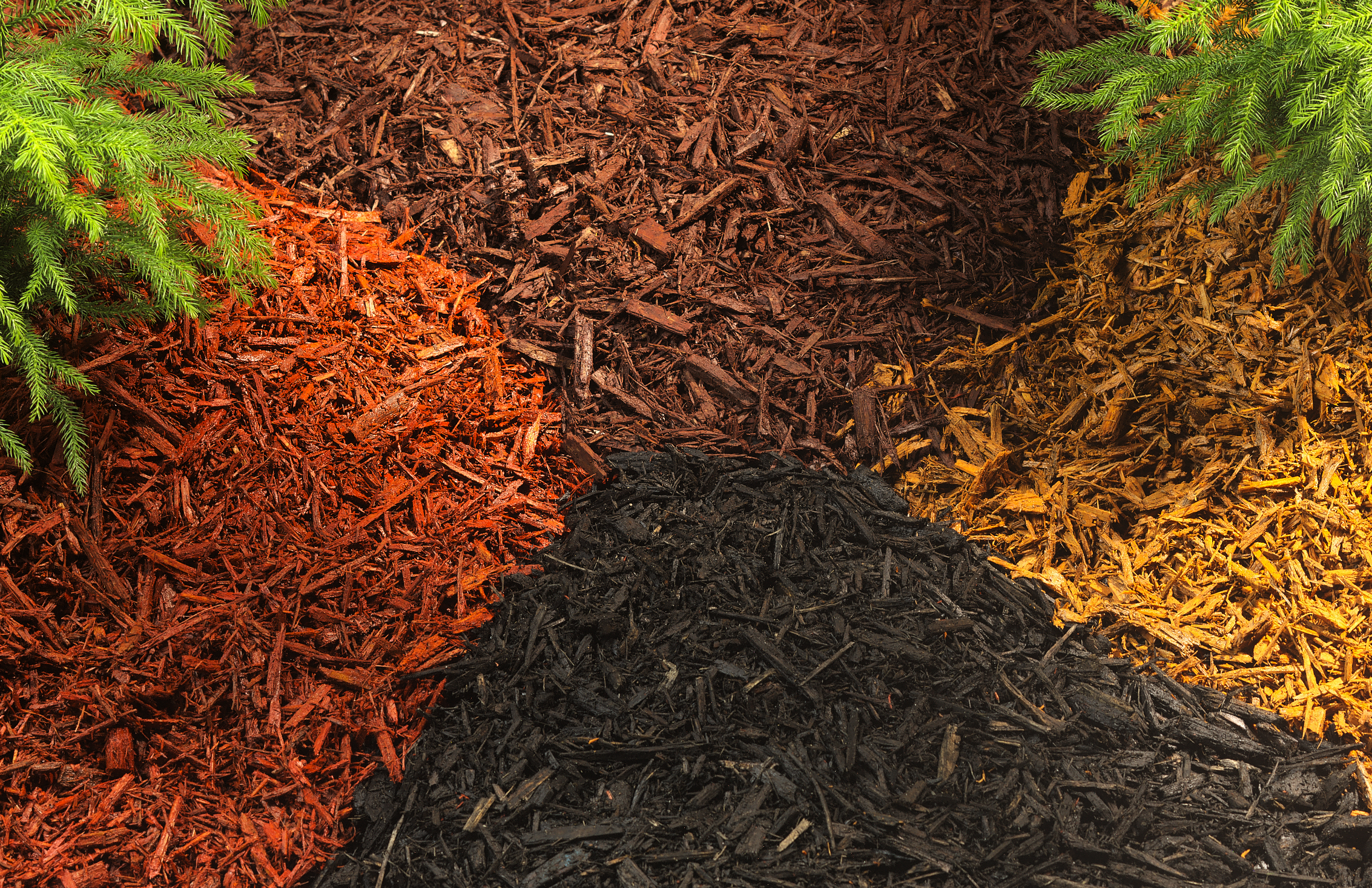 The Benefits of Using Mulch in Your Landscape Texas Mulch